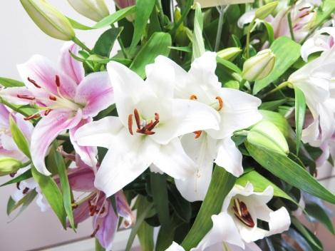 freshflowers.com.au review flower arrangment floral bouquet 1